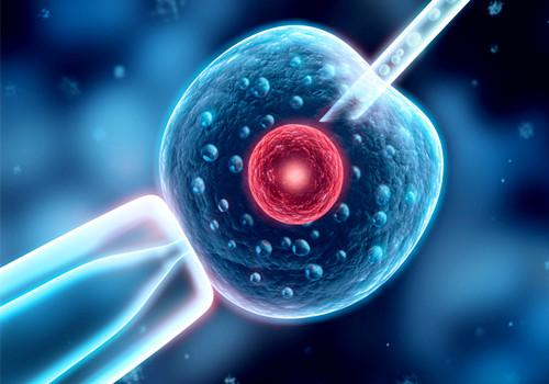 什么是不动精子 能受孕吗_健康资讯_就医160