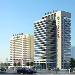 武汉市第六医院